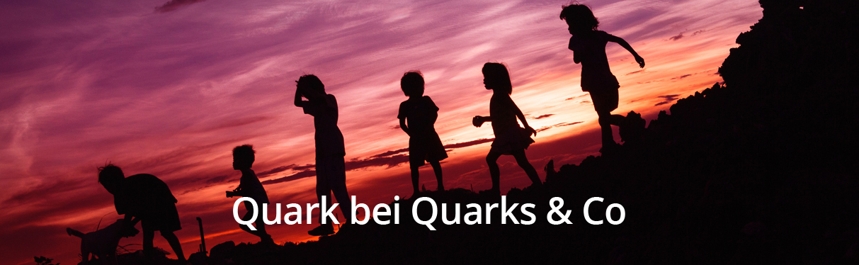 Quark bei Quarks & Co